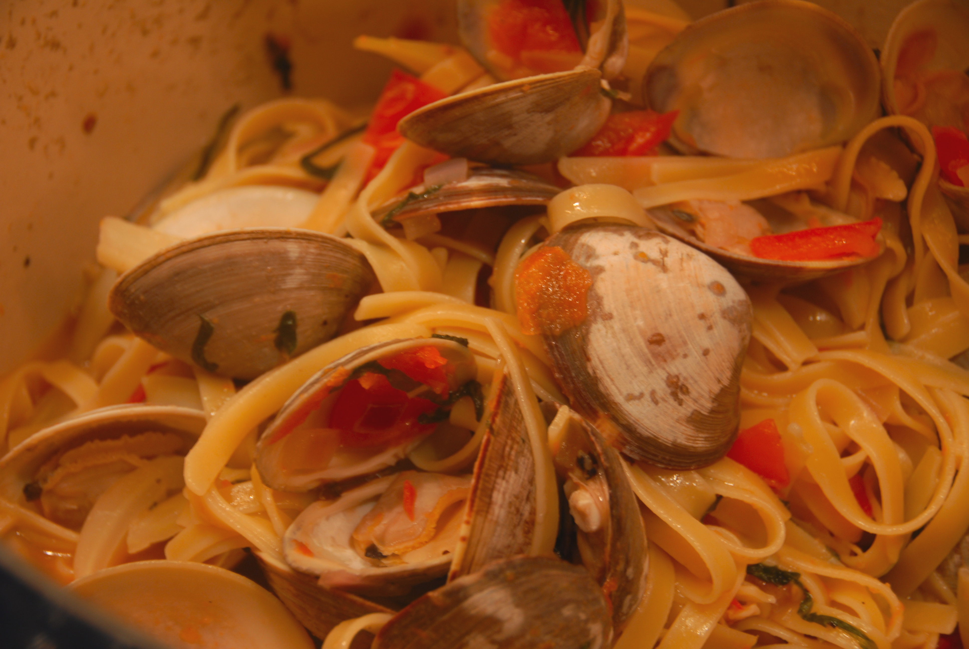 Linguine with Clams, Tomato and Fennel | aTaleof2Kitchens